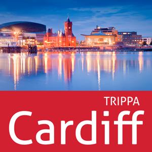 Cardiff Icon